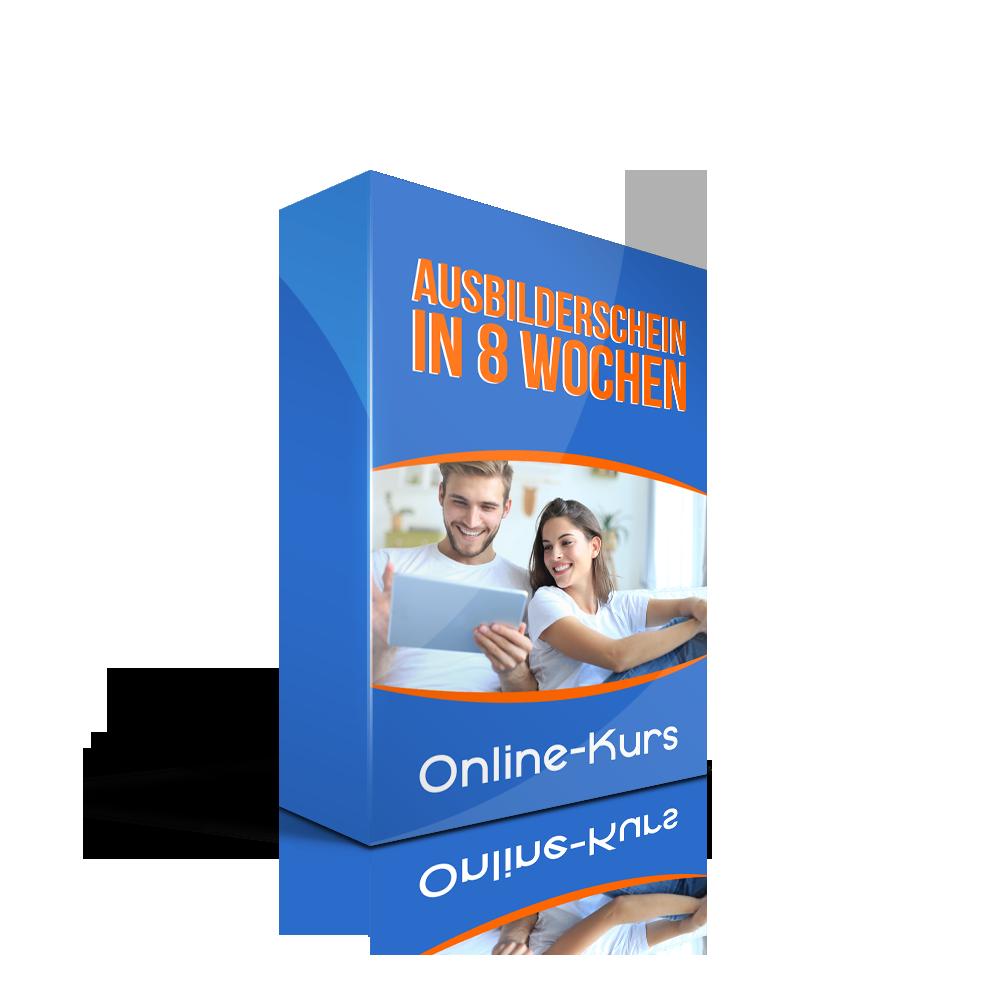 Online-Kurs Ausbilderschein in 8 Wochen